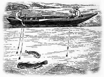 Ловля на квок предполагает активную ловлю сома с медленно движущейся посредством течения, ветра или гребца, лодки.